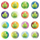 Set of abstract round color eco icons in the form of a glass bow with leaves Royalty Free Stock Photo