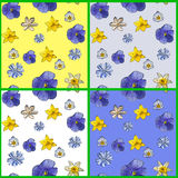 Set of abstract seamless pattern with flowers of pansyes. Illustration of spring flowers with blue accent in 4 colors royalty free illustration