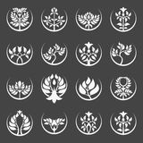 Set of abstract tree emblem. Stock Photography