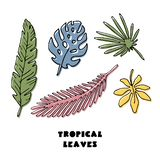 Set of abstract tropical leaves vector illustration