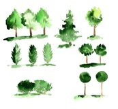 Set of abstract watecrolor trees with green leaves. Set of abstract watercolor trees with green leaves on a white background Stock Photo