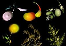 Set abstrakcjonistyczni fractals jak rośliny Zdjęcie Royalty Free