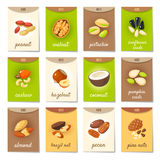 Set of AD-cards, banners, tags, package with cartoon nuts Stock Photos
