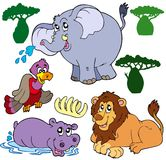 Set of African animals 1. Illustration Stock Photography