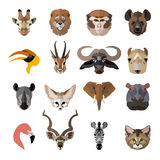 Set of african animals faces  icons. Flat Royalty Free Stock Photo