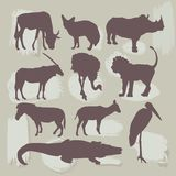Set of African animals. Silhouette. vector Stock Images