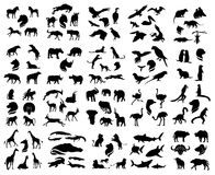 Set of african animals silhouettes Stock Photo