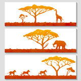 Set of African banners Stock Photos