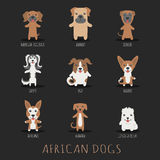 Set of african dogs Stock Image