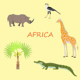 A set of African flora and fauna, vector illustration. A set of African flora and fauna, vector Stock Image