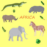 A set of African flora and fauna, vector illustration. A set of African flora and fauna, vector Royalty Free Stock Images