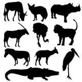 Set afrikanische Tiere Schwarzes Schattenbild auf weißem Hintergrund Vektor Stockfotografie