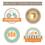 Set of 4 agricultural and farming badges Stock Photo
