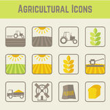 Set of agricultural icons Stock Photos