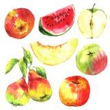 Set akwareli owoc na białym tle Zdjęcia Royalty Free