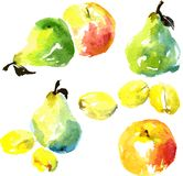 Set akwareli rysunkowe owoc Obraz Stock
