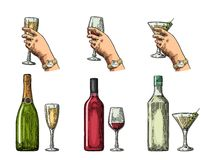 Set alcohol drinks with bottle, glass and hand holding cocktail, wine Royalty Free Stock Photography