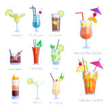 Set of alcoholic cocktails isolated fruit cold drinks tropical cosmopolitan freshness collection and party alcohol sweet vector illustration
