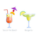 Set of alcoholic cocktails isolated fruit cold drinks tropical margarita freshness and party alcohol sweet tequila vector illustration