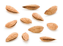 Set almond nut Stock Photo