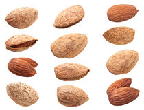 Set almond nut closeup Stock Photos