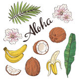 Set of aloha objects - coconut, banana, flowers and leaves. Royalty Free Stock Photo