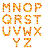 Set of alphabets created by daisy flowers. Stock Images