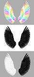 A set of angel wings. In white and black and color Stock Photos