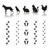 Silhouettes of animals with footprints on white background vector illustration
