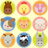 Set of animal faces. Farm animals Royalty Free Stock Images