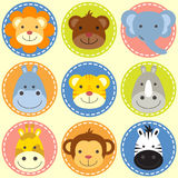 Set of animal faces. Zoo animals Stock Images