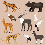 Set of animal Far East. Vector Illustration Royalty Free Stock Photography