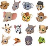 Set of animal heads Stock Photos