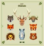 Set of animal heads. Vector illustration Stock Photos