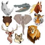Set of animal heads. Vector isolated elements Royalty Free Stock Photo