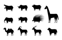 Set of animal icons in silhouette style, vector. Design Stock Image