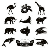 Set of animal icons. Vector illustration Royalty Free Stock Image