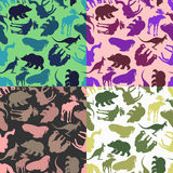 Set animal pattern. Color options from ornaments of wild animals Royalty Free Stock Images