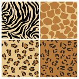 Set of Animal Patterns Royalty Free Stock Photos