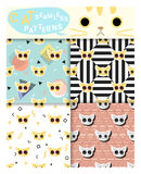 Set of animal seamless patterns with cat Stock Image