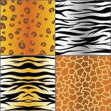 Set of animal skins Royalty Free Stock Photo