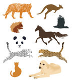 Set of animal vectors Royalty Free Stock Images