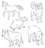Set of animals: bull, dog, horse, rat and pig Royalty Free Stock Photo