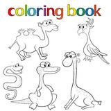 Set of animals for coloring book Royalty Free Stock Photo