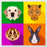Set of animals with Flat Design. Symmetrical portraits of animals. Vector Illustration. Labrador dog, lemur, leopard, rabbit. Stock Images