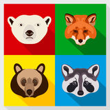 Set of animals with Flat Design. Symmetrical portraits of animals. Vector Illustration. Polar bear, raccoon, red fox, brown bear. Royalty Free Stock Photo