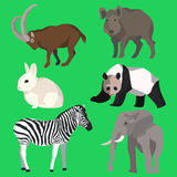 Set animals goat, wild boar, panda, rabbit, zebra Stock Photography