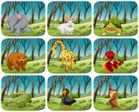 Set of animals in nature scenes. Illustration vector illustration