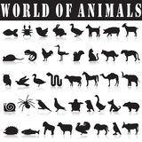 Set of animals silhouettes Royalty Free Stock Photos