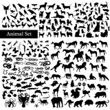 Set of animals silhouettes Royalty Free Stock Image
